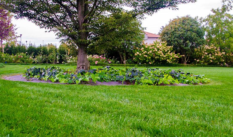 giardiniprivati-09